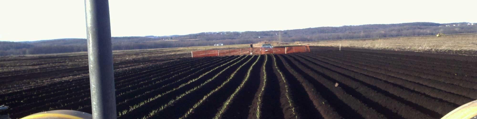 Wholesale Produce & Vegetables - Local & Farm Fresh
